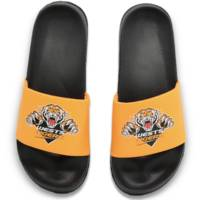 Wests Tigers Summer Slides0